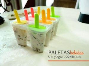 paletas-heladas
