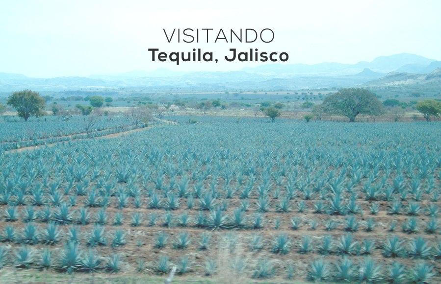visitando-tequila